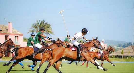 playing polo in autumn