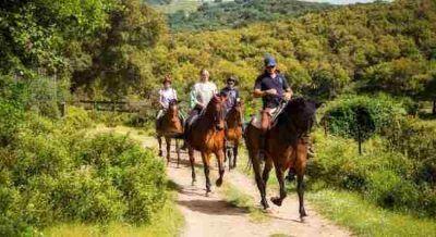 Private excursions Marbella